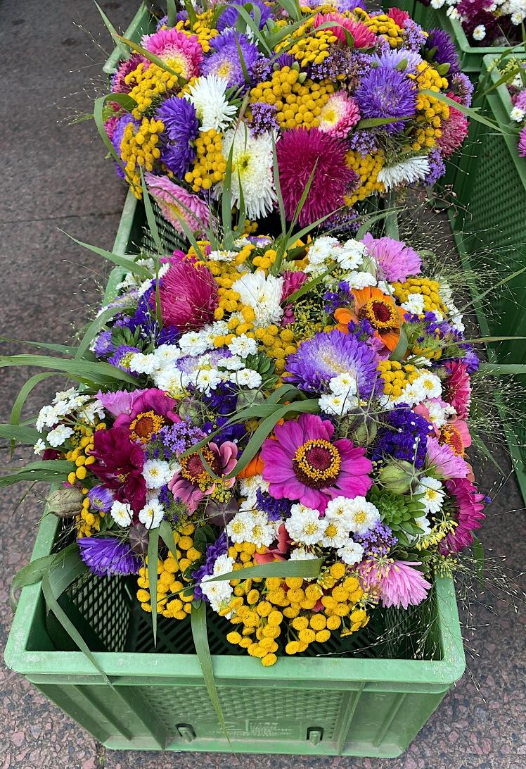 Blumen_9207